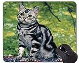 Yanteng Gaming Mouse Pad Custom, Funny Kitten Cat Home Office Accesorios de computadora Alfombrillas