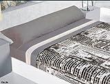 COTTON ART - Juego de sabanas CITY LIFE 3 PIEZAS Cama de 105 x 190/200. Encimera ( 180 X 260 )+ 1...