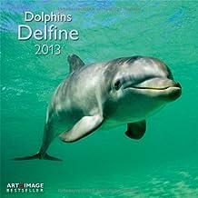 Delfine 2013 Broschürenkalender