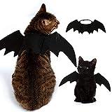 Best Vestir trajes de Halloween - Murciélago Alas Vampiro Negro Lindo Disfraz De Halloween Review