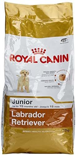Royal Canin : Croquettes Chiot Bhn Labrador : 12 Kg