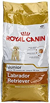 Royal Canin Labrador Retriever Junior 12.0 kg