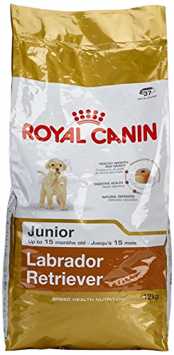 Royal Canin Labrador Retriever Junior 12 kg, 1er Pack (1 x 12 kg) -