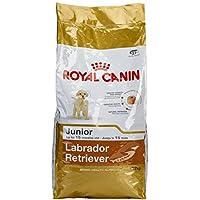 Royal Canin Labrador Retriever Junior 12 kg, 1er Pack (1 x 12 kg)