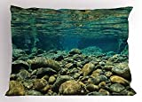 Ytavv River Pillow Sham, Underwater View with Rocks and Pebbles Torrent Clear Fresh Water of Dumbea River, Decorative Standard Queen Size Printed Pillowcase, 30 X 20 inches, Blue Sea Green
