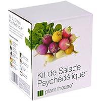 Kit de Salade Psychédélique par Plant Theatre – 5salades étonnantes à cultiver soi-même – Idée cadeau