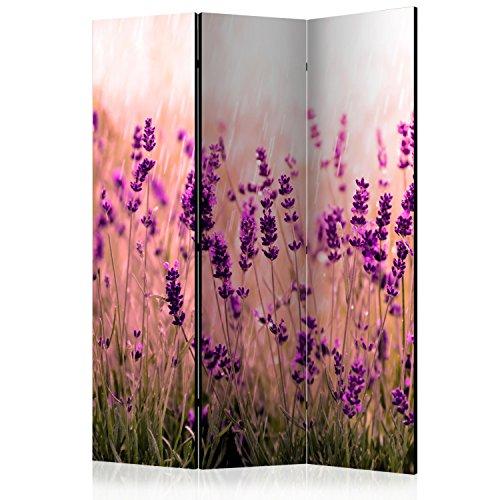 murando - Biombo con Tablero de Corcho: 135x172 cm de impresión en el Lienzo de TNT Foto Biombo Decorativo para Interiores b-B-0111-z-b