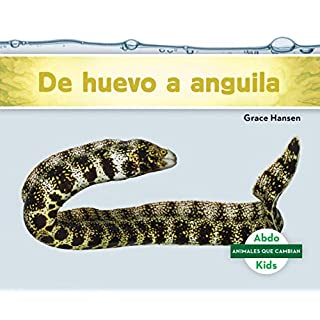 de Huevo a Anguila (Becoming an Eel) (Animales Que Cambian (Changing Animals))