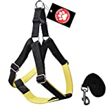 #2: Pawzone Nylon Body Harness With Leash For Dogs -Yellow Large (1 Inch)