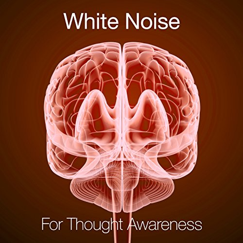 White Noise: White Noises