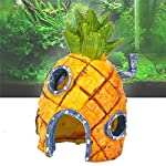 Oyedens Aquarium Ornaments Pineapple House for Fish Tank (Pineapple) 14