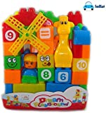 #4: FunBlast Learning Blocks for Kids with Cartoon Figures, Bag Packing, Best Gift Toy, Multicolor (Set of 35 Pcs)