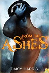 From the Ashes (Fire and Rain Book 1) (English Edition)