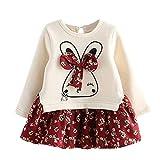 Beikoard_Babykleidung Mädchen Winter Kleinkind Kinder Baby Mädchen Kleid nKarikatur Hase Blumen Prinzessin Kleider Party Kleid Kleider