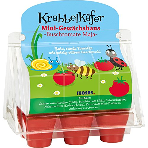 Moses 16055 Krabbelkäfer Mini-Gewächshaus Tomate/Erdbeere