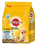 Pedigree Junior Medium Hundefutter Huhn und Reis, 3 kg