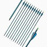 Sportsmann Pfeile Bogenschießen Aluminiumpfeile 12pcs Jagd Pfeile Bogenpfeile 31 Zoll für Recurve Bow Sportbogen Compoundbogen (Blau)