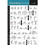 NewMe Fitness étirement Poster d'exercice laminé-Indique au Stretch Muscles spécifiques pour Votre séance d'entraînement-Home Gym Fitness Guide (500mm X 700mm)...