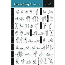 Estiramiento Póster laminado – muestra cómo para estirar los músculos específicos para tu Entrenamiento – Gimnasio