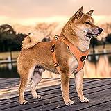 Siivton Hundegeschirr, verstellbar refletive keine Pull Hundegeschirr mit Griff Easy Training Walking Running für große/medium/Small/Hunde