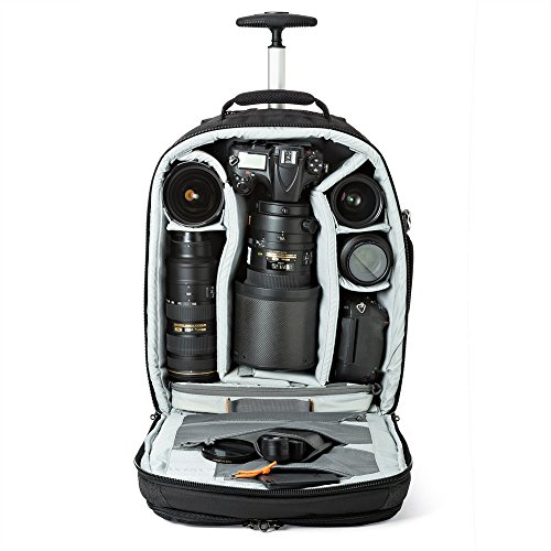 Great Buy for Lowepro LP36876 Pro Runner RL X450 AW II Bag for Camera – Black Special
