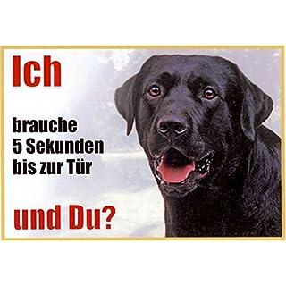 AkaPit Warnschild Warnschild Labrador schwarz 057 ca. 21 x 15 cm laminiert wasserabweisend Motiv : Ich Brauche 5 Sekunden bis zur Tür und Du ? Verwendbar im Innen und Außenbereich