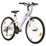 Multibrand, PROBIKE ADVENTURE, 24 Zoll, 290mm, Mountainbike, 18 Gang, Shimano, Damen, Kinder, Junioren, Weiß