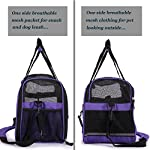 purple pet carrier for dogs cats comfort travel tote soft sided bag with mat Purple Pet Carrier for Dogs Cats Comfort Travel Tote Soft Sided Bag with Mat 51KrGIuxBZL