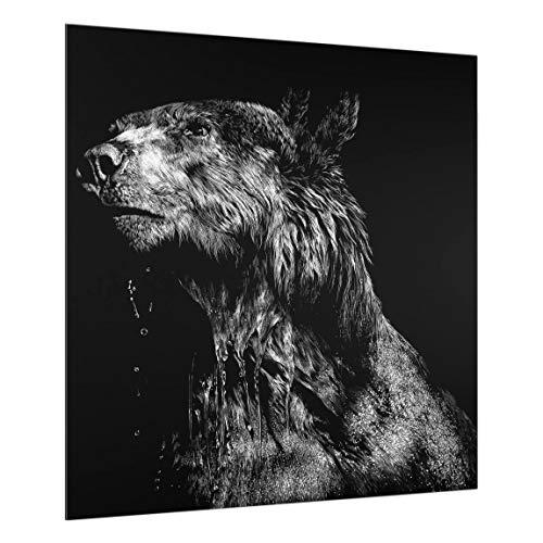 Bilderwelten Spritzschutz Glas - Fliesen-Verkleidung - Bär vor Schwarz - 59 x 60 cm Fliesenspiegel