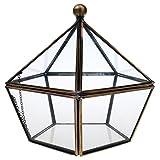 Homyl Luft Pflanzer Mini Glas Terrarium Geometrisches Glas Sukkulente Pflanzen Pflanzgefäß Container Home Office Hochzeit Dekoration - durchsichtig, 170*160*160MM