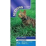 Suttons Seeds - 108464, Semi di erba gatta