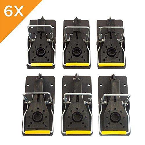 6 Pack Premium Ratoneras Profesionales en plástico y acero inoxidable, reutilizables, mas efectivas que las trampas convencionales.