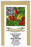 Wohl eine der weltweit bekanntesten Chili-Sorten - Chili Tabasco - 20 Samen