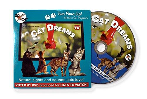 GoCat Cat Cat Cat Dreams DVD für Katzen