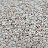 Terralith Marmor-Steinteppich 4-8 mm Botticino für 1qm incl. Bindemittel