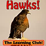 Image de Hawks! Learn About Hawks And Learn To Read - The Learning Club! (45+ P