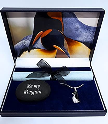Pingouin Boîte cadeau