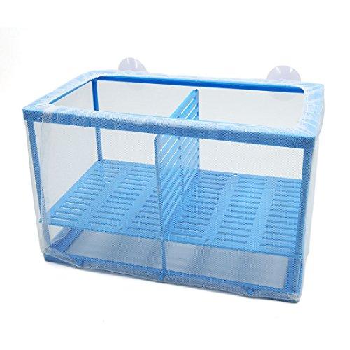 Sourcingmap® Betta Tank Aquarium Fisch Trennrahmen Netz Braten Brutstätte Zuchtbox Blau de - Aquarium Fisch Für Betta