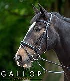 Gallop Comfort Briglia, Extra Full Size, Nero