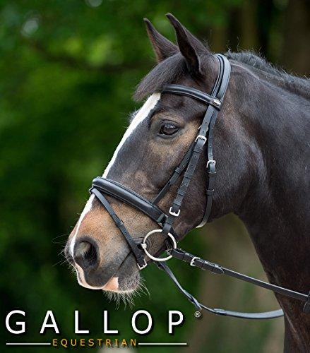 Gallop Zaumzeug Komfort und Zügel aus Gummi, Schwarz, Vollblut/Cob
