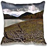 Driftwood Pattern Design Throw Pillow Case Cushion Cover Home Sofa Decorative 20x20 Inch(2 Sides)