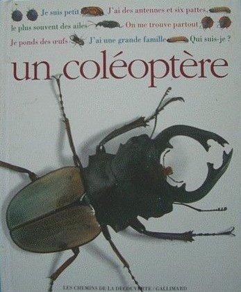 qui-suis-je-un-coleoptere-102097