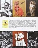Image de Dictionnaire amoureux des chats