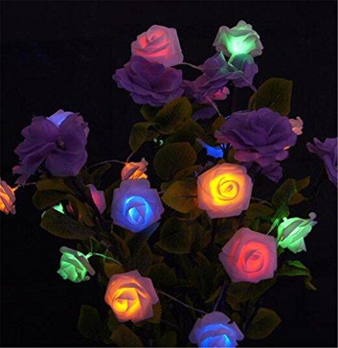 WEIMEI A batteria 2,2 M 20 Rose LED String Natale luci luci luci impermeabili per paesaggio giardino cortile casa e decorazioni di festa , color - Camera Pull String