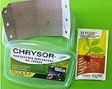 CHRYSOR, Boîte de 6 bandelettes d'oeufs Chrysopes + 1 sachet MYCOR