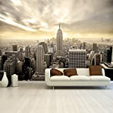 Fotomurale New York carta da parati fotographica Shining Manhattan 366 x 254 cm Deco.deals, pennellessa:mit Bürste / with glue brush