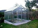Gewächshaus mit Glas unschlagbar stabil 2,5 x 3,05 m
