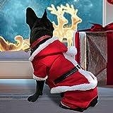 PETLESO Abrigo para cachorro de perro, diseño de Papá Noel, disfraz de Navidad con un LED intermitente