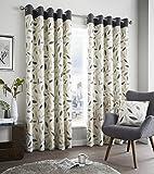 Fusion cortinas Beechwood, 100% algodón, algodón, gris oscuro, 46x54 (117 x 137...
