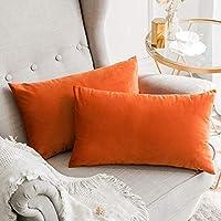 Super Suchergebnis Auf Amazon De Fur Sofa Zierkissen Hullen Forskolin Free Trial Chair Design Images Forskolin Free Trialorg